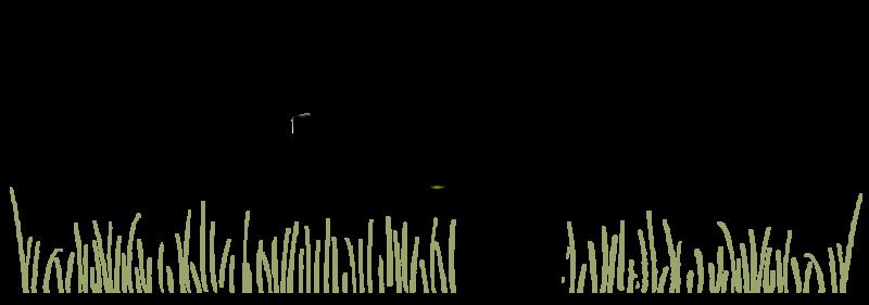 Ecopagesos